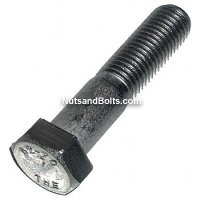 M12x1.75x25 Stainless Steel Metric Bolts (Hex Head Cap Screws) Qty(10)